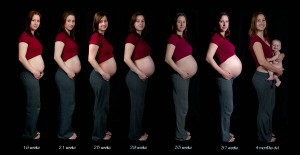 pregnancy-sequence1